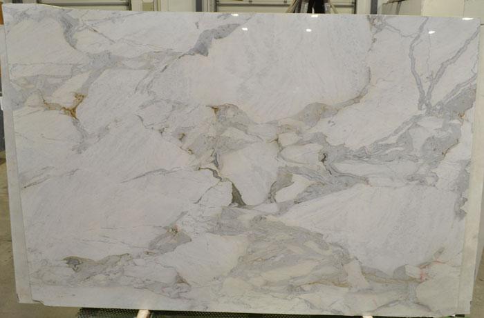 Michelangelo Extra 2cm Polished Quartzite #201021 (ZINI)